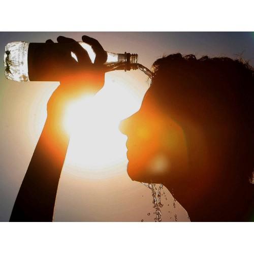 5 советов по выживанию в жаркую погоду